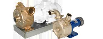 Marine pumper